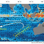 How currents pushed debris from the missing Malaysian Air flight across the Indian Ocean to Réunion