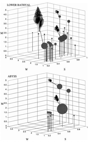 From McClain et al. 2004