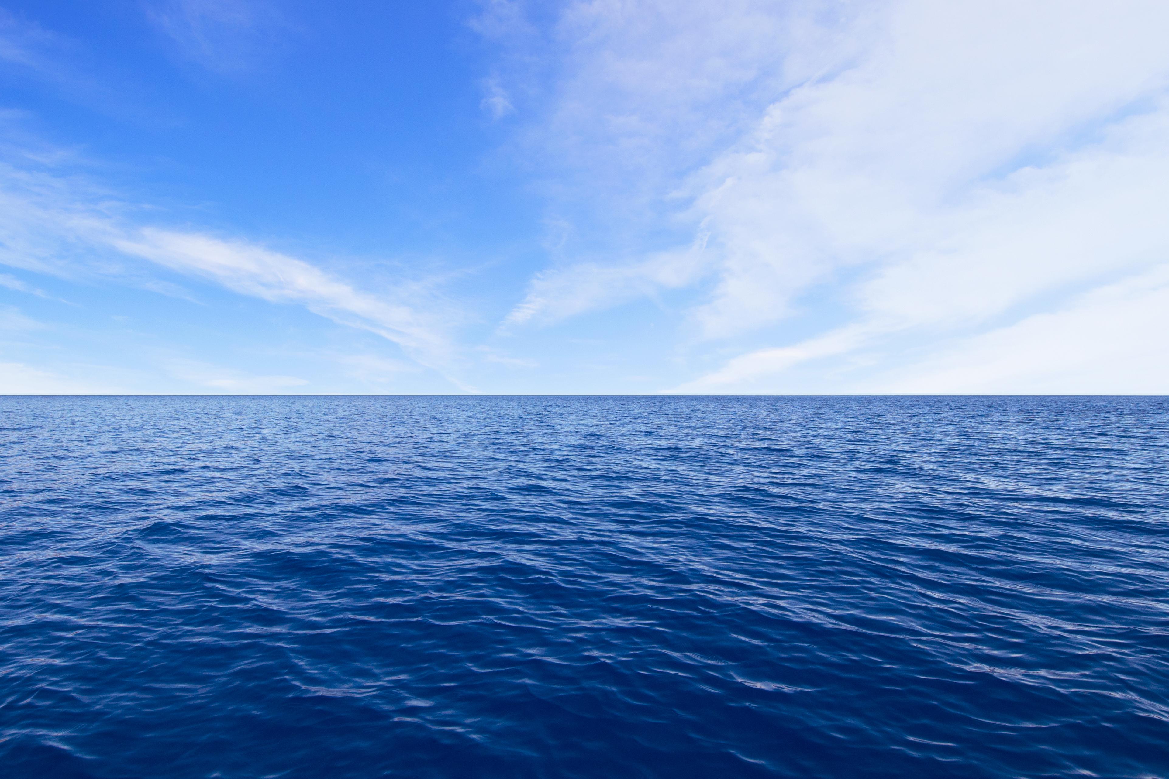 In The Ocean Or On The Ocean