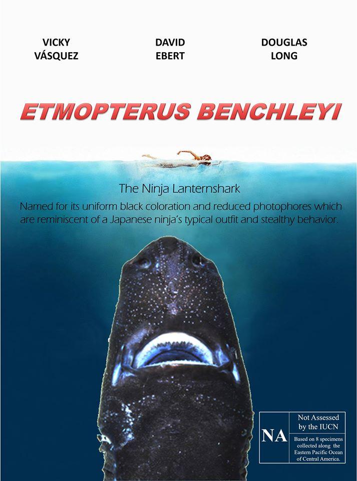 Etmopterus benchleyi film poster