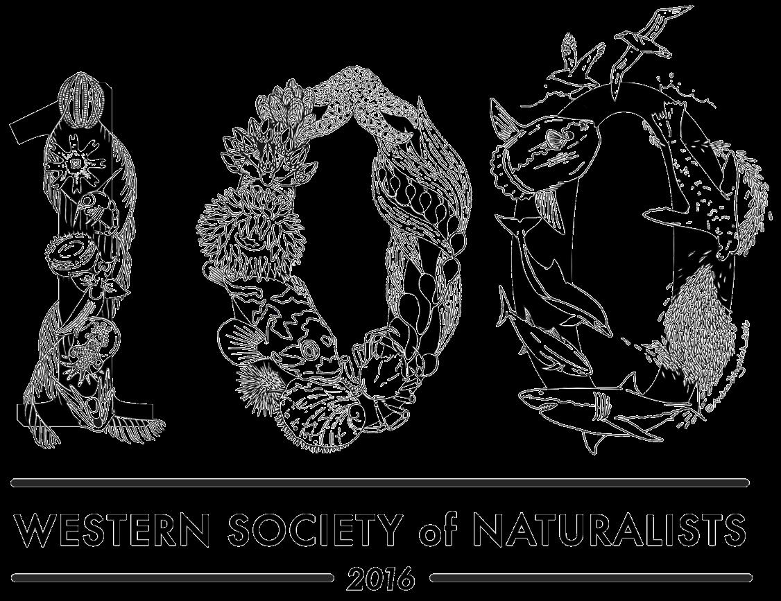 wsn-2016-logo