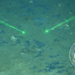 The lingering and extreme impacts of the Deepwater Horizon oil spill on the deep sea